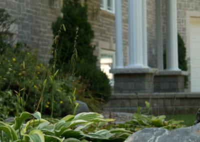 Front-door-plants